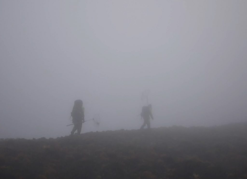 Me and Peter Ryan fighting our way through heavy mist and strong winds, during field work on Inaccessible Island in 2011. Photo (video still) (c) Martim Melo.